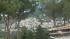 SERRONE - BILANCIO POSITIVO PER LA 56ESIMA EDIZIONE DELLA SAGRA DEL VINO CESANESE E PER LA TERZA DEL PALIO NAZIONALE DELLE BOTTI